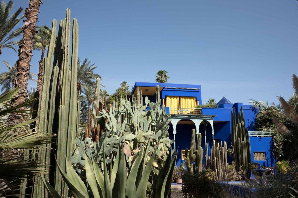 3. Que faire à Marrakech - Visiter le jardin Majorelle