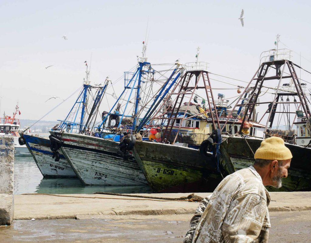 Essaouira Maroc - Le port de pêche